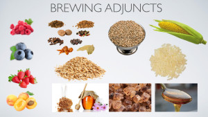 Brewing Adjuncts.001