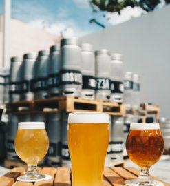 Proper Glassware – Making the Most of Your Beer Education Presentation